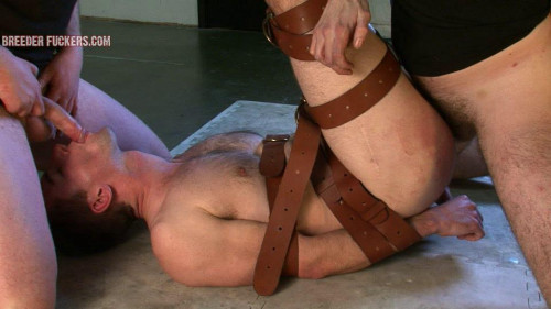 Gay BDSM shamus5-l
