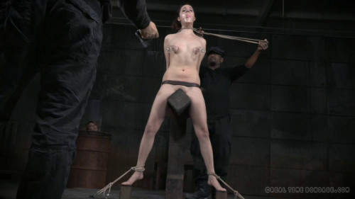 bdsm Bondage Monkey Part 1