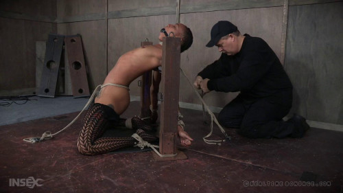 bdsm Back for More Part 1