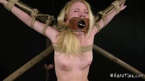 bdsm In a Good Way Part Two