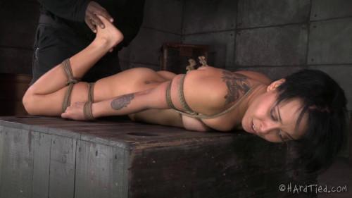 bdsm The New Girl Part 1 Mia Austin - BDSM, Humiliation, Torture