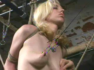 bdsm Big Vip Collection 43 Best Clips Insex 2001 Part 1.