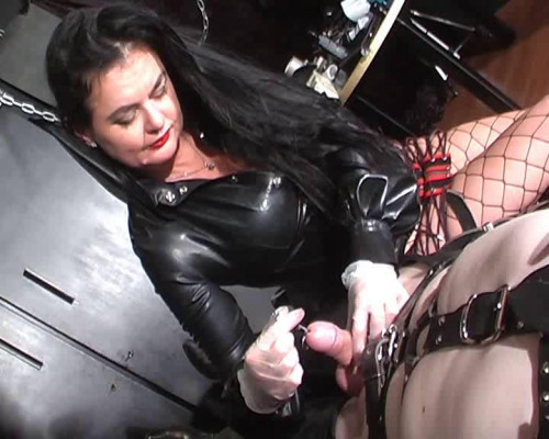 Femdom and Strapon sounds pleasure
