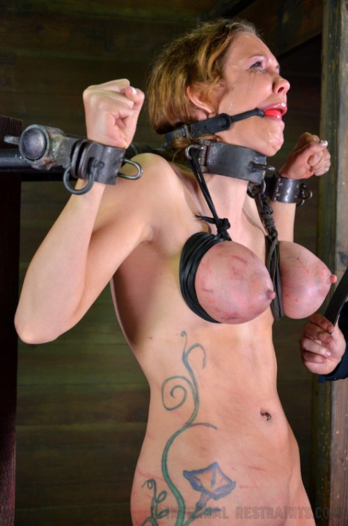 bdsm IR - Ass Trauma - Rain DeGrey - January 03, 2014 - HD