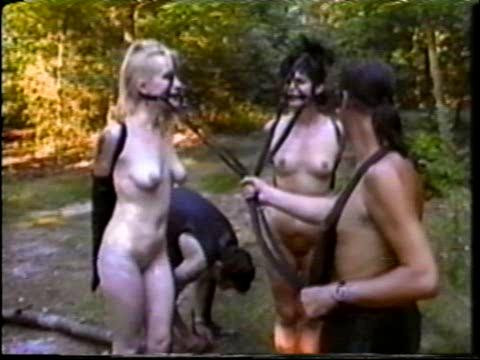 bdsm British Ponygirls