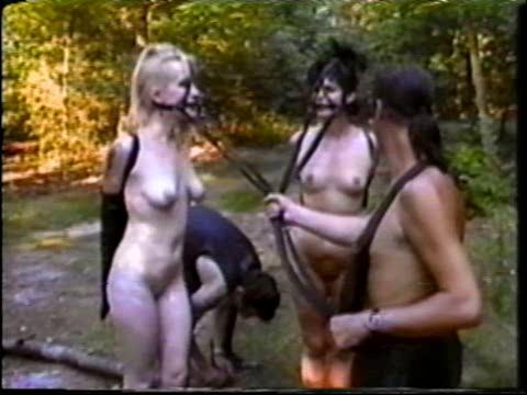 bdsm British Ponygirls