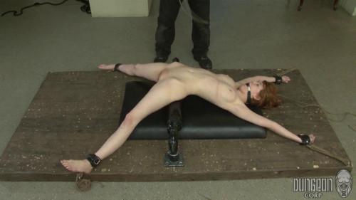 bdsm Hard Banding Naughty Whores - SocietySM