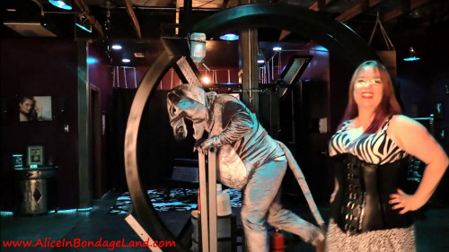 Femdom and Strapon Hamster Wheel From Hell - FemDom Pet Play Sadistic Humiliation