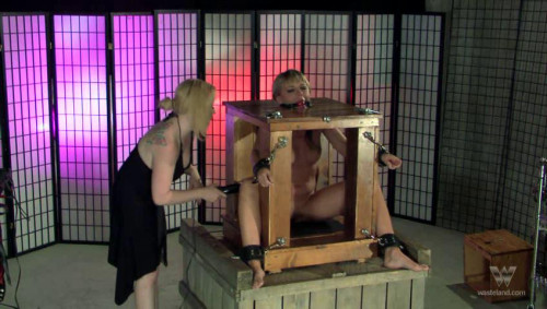 bdsm Mistress Ironys Dungeon