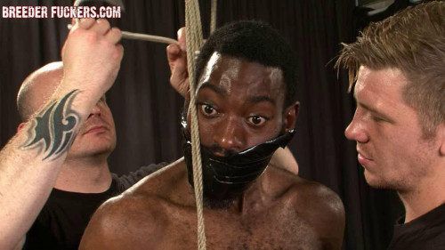 Gay BDSM BreederFuckers - Joseph Session 6