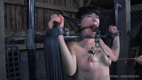 bdsm The Farm Part 2 Tortured Sole