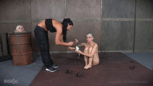 bdsm BDSM experiment