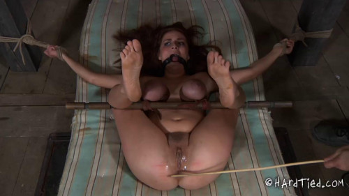 bdsm Ashley Graham - Trapped Part Two