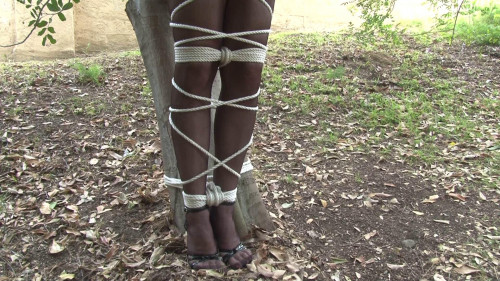 bdsm Bound and Gagged - Tied to a Tree in Lingerie - Ashley Renee