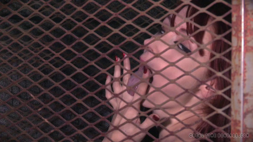 bdsm RTB - Elizabeth Thorn, Violet Monroe