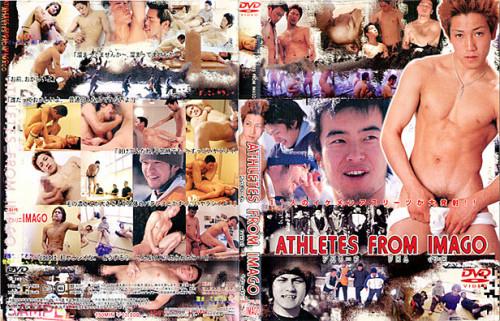 成虫の選手 Asian Gays