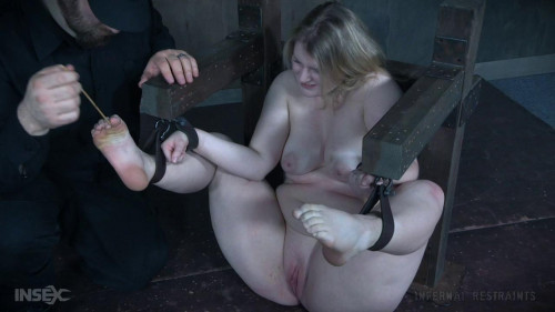 bdsm Tinker Toy