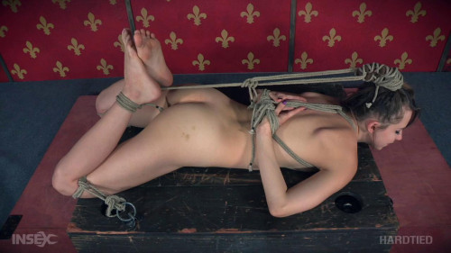 bdsm Bent Back Bondage Bitch