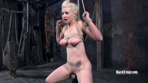 bdsm Niki Nymph