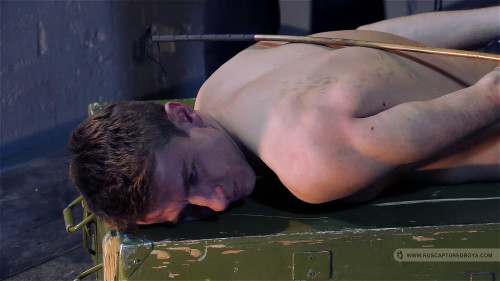Gay BDSM Interrogation of Car Thief - Part II