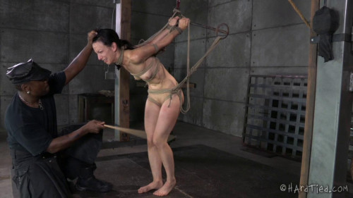 bdsm Bondage Therapy Part 2 - Elise Graves, Jack Hammer