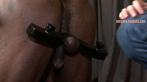 Gay BDSM Joesph Session Five (540p)