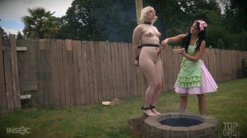 bdsm A Ladys Guide to Pork Roast