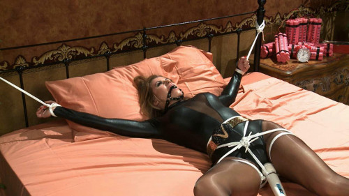 bdsm The Perils Of Ultra Vixen Emily Addison And Randy Moore