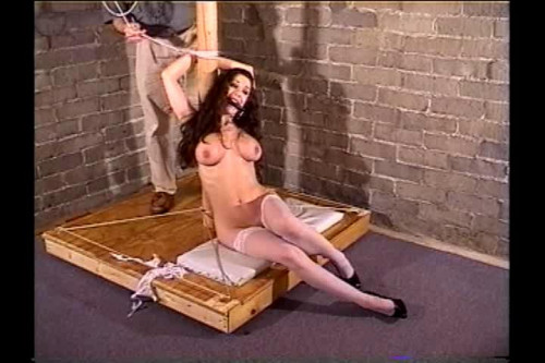 bdsm Captured Beauty