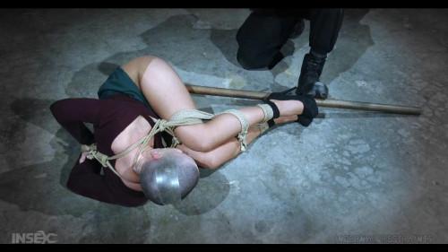 bdsm Sexy Abigail Dupree Broken By Jack Hammer