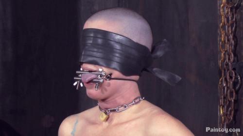 bdsm Abigail Dupree - Slave Games