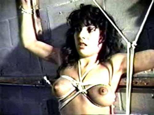 bdsm Chamber Of Horrors - ZFX-P
