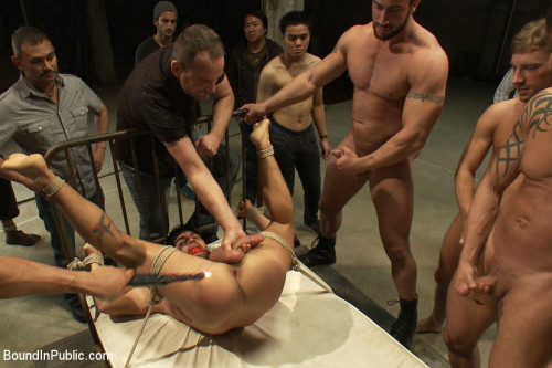 Gay BDSM Dominic Pacifico Destroyed