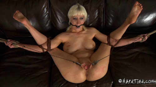 bdsm Cherry Torn - Willing Art Part Two