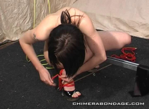 bdsm Big Best Collection Clips 50 in 1 , ChimeraBondage. Part 6.