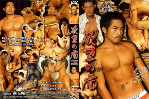 Gayce Avenue - Erotic Tiger