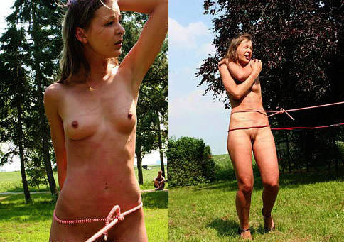 DOWNLOAD from FILESMONSTER:  WhippedWomen Extreme BDSM Extreme Torture  WhippedWomen   Flower Theft