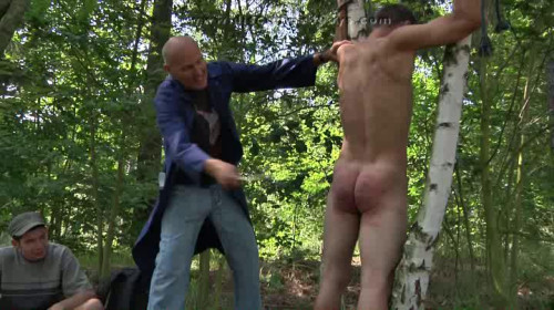 Gay BDSM Discipline Botany