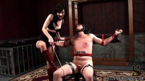 Femdom and Strapon Trained to entertain orig