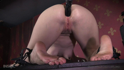 bdsm Insatiable Ass Part 2 (25 Jun 2016)