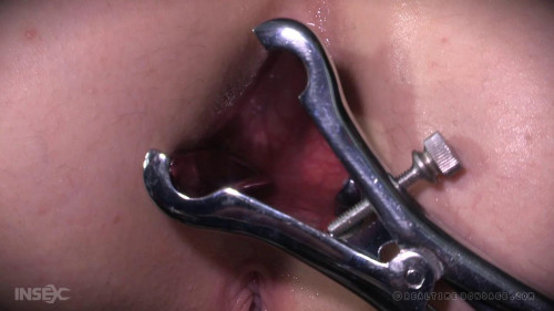 bdsm Anal examination - Ashley Lane