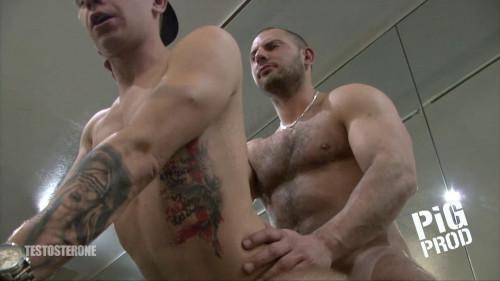 Pig Prod - Testosterone