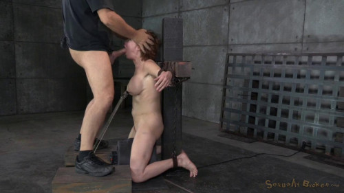 bdsm Veronica Avluv - Matt Williams - BDSM, Humiliation, Torture