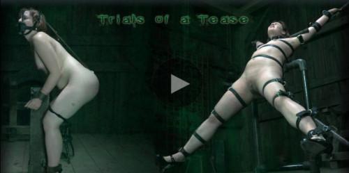 Trials of a Tease BDSM
