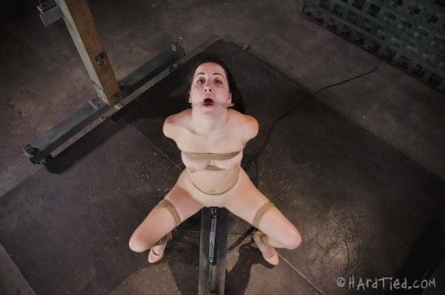bdsm HT - Dec 17, 2014 - Blaze-in Bondage - Marley Blaze, Jack Hammer - HD