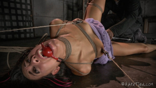 bdsm HT - Lyla Storm, Jack Hammer - Squirmy Squirrel - September 17, 2014