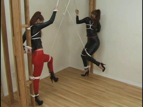bdsm Lashed In Latex