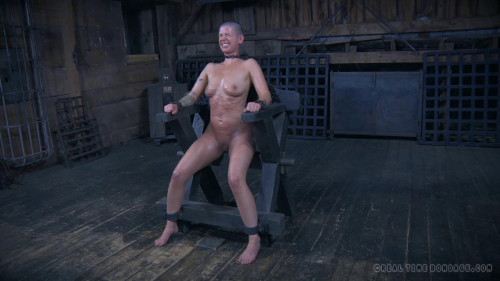 bdsm The Extended Feed of Miss Dupree, Part 5