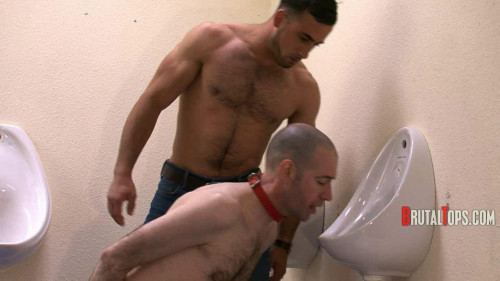 Gay BDSM BrutalTops - Session 210 - With Your Face In The Toilet Im Going To Fuck Your Arse