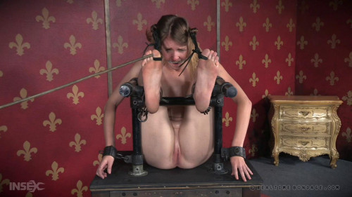 bdsm Insatiable Ass Part 3 - HD720p